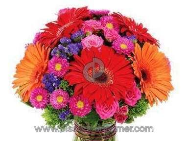 Avasflowers Floral Vibrance Bouquet review 100971