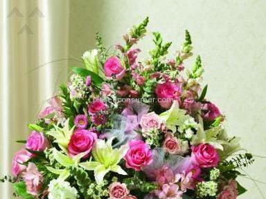 Avasflowers Flowers / Florist review 54655
