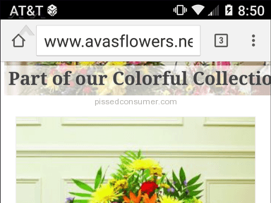 Avasflowers - Simple Review #1468803684