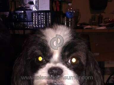 Petsmart Grooming Service review 42455