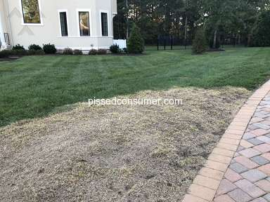 Trugreen Lawn Aeration Service review 341036