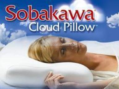 Sobakawa Pillows Furniture and Decor review 4041