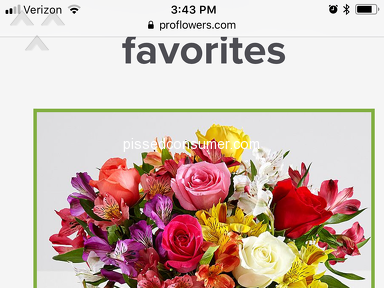 ProFlowers Smiles And Sunshine Arrangement review 290578