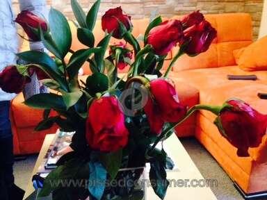 Avasflowers Arrangement review 180934