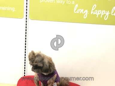 Petco Pet Stores review 294358