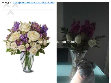 Bloomex Flowers - Absolutely embarrassing