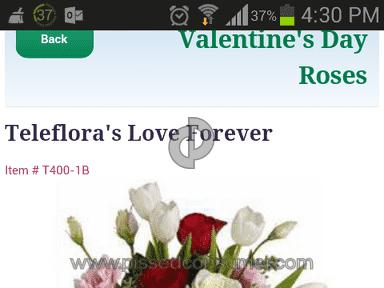 FlowerShopping Flowers / Florist review 61619