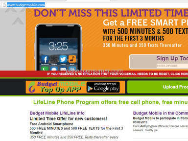 Budget Mobile Lifeline Phone Program Deal review 138793