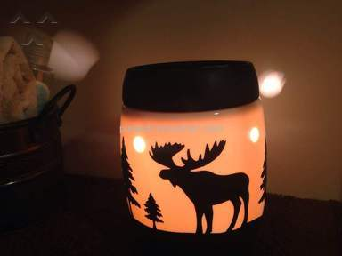Scentsy Candle Warmer review 172338