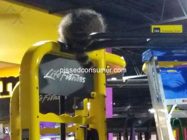 Planet Fitness - Animal cruelty