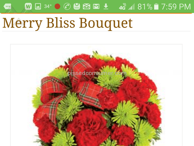 Avasflowers - Merry Bliss Arrangement Review