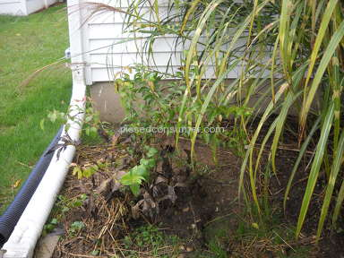 Miller Pipeline Water Pipe Line Installation review 239292