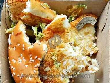 Mcdonalds Sandwich review 115227