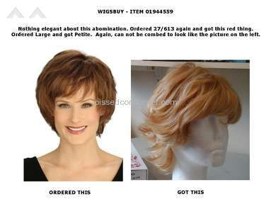 Wigsbuy Human Hair Wig review 139853