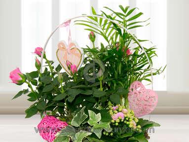 Prestige Flowers Flowers review 118877