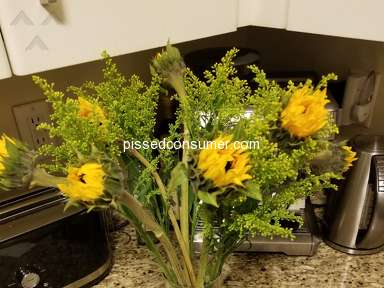 From You Flowers Flowers / Florist review 300528