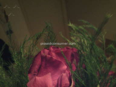 1800flowers Bouquet review 63431