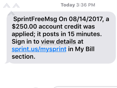 Sprint - Fraud