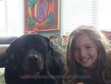 Big Dog Kennel Rottweiler Dog review 248050