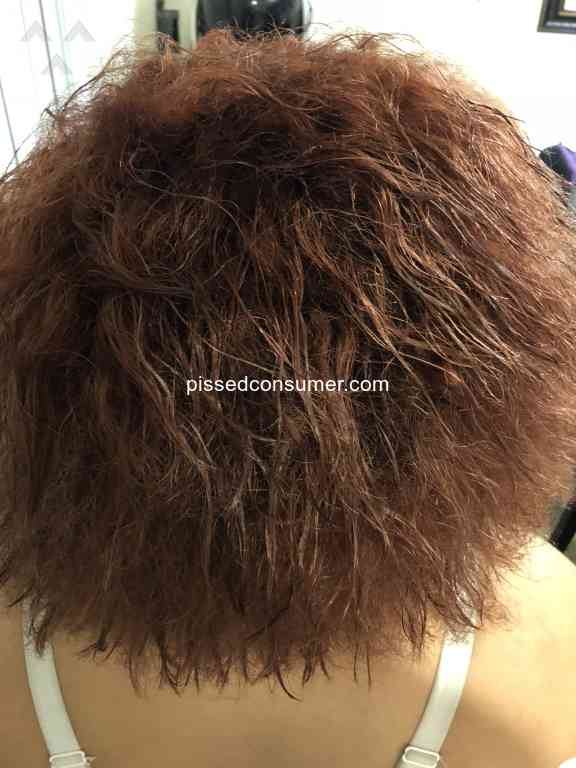 506 Hair Cuttery Reviews And Complaints Pissed Consumer