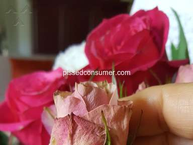Justflowers Flowers / Florist review 342436