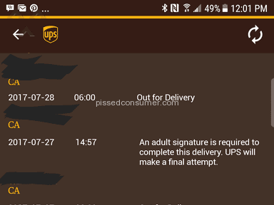 Ups Delivery Service review 221834