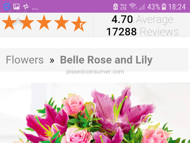 Prestige Flowers Belle Rose And Lily Bouquet review 272776