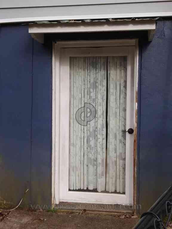 Beautiful Lowes Wood Entry Door