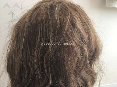 Wigsbuy Human Hair Wig review 277018