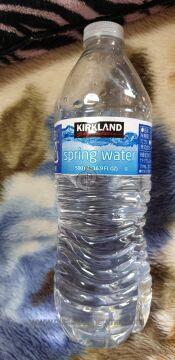 Kirkland Signature Bottled Water