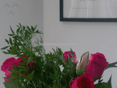 Prestige Flowers - Very Disappointing