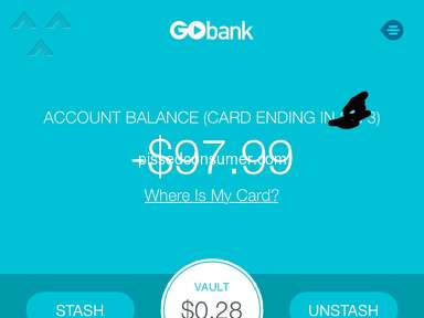 GoBank Account review 544987