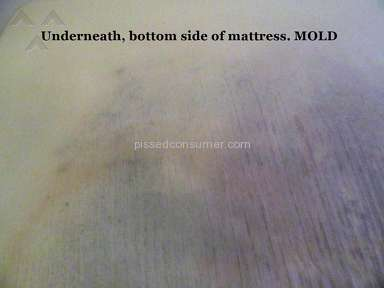 Bobs Discount Furniture Mattress review 226212
