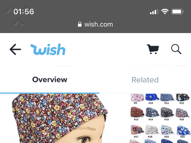 Wish Shipping Service review 692021