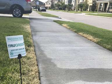 Trugreen - Lawn Service Review from Longwood, Florida