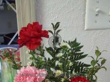Avasflowers Arrangement review 12261