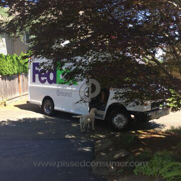 Fedex Vehicle Driver