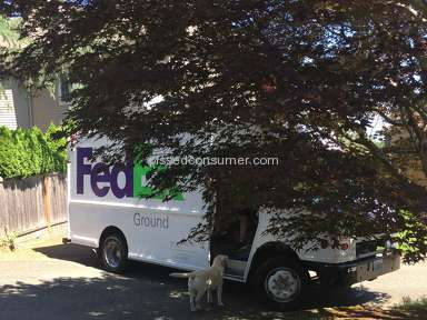 Fedex Vehicle Driver review 148278