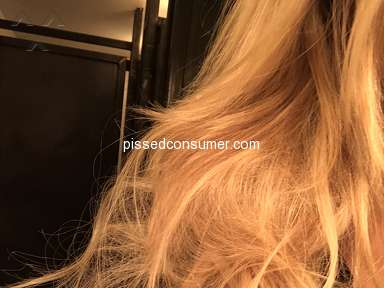 Glam Seamless Human Hair Extension review 291682