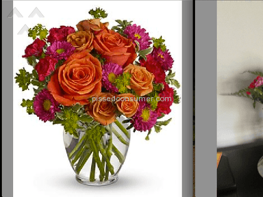 Proflowers Delivery Service review 23417