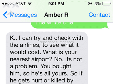 Amber Rosenbaugh Breeder Animal Services review 31969