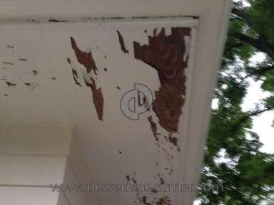Behr Paint review 114779