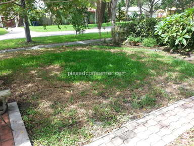 Trugreen Lawn Service review 47001