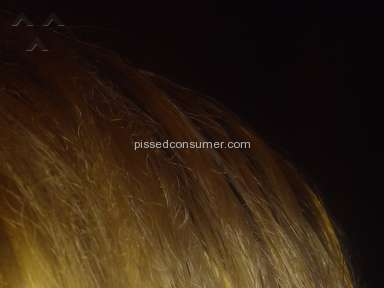 Clairol - Nice And Easy Hair Dye Review from Van Buren Charter Township, Michigan