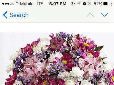 Proflowers Shower Of Flowers Arrangement review 132457