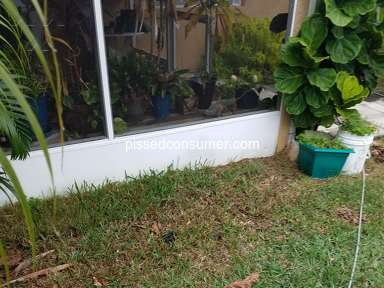 TruGreen Landscaping and Gardening review 877132