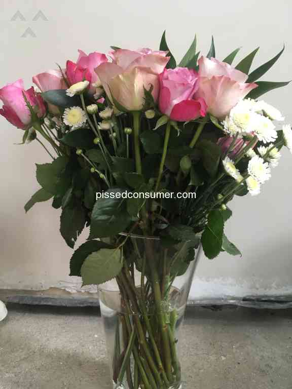 Prestige Flowers - Waste of money and a rip off. Stay away at all ...